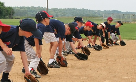 St. Louis Cardinals One-Day Kids' Baseball Clinic (June 7–July 27)