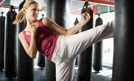 One Month of Unlimited Cardio-Kickboxing Classes with Gloves for One or Two at Seigler's Karate Center (Up to 63% Off)