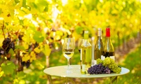 Vineyard Tour and Wine Tasting for Two or Four at Polgoon Vineyard & Orchard (50% Off)