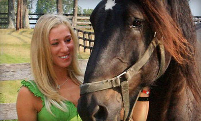 Diamond View Farm - Versailles: Two or Four Private Horseback-Riding Lessons at Diamond View Farm in Versailles (Half Off)