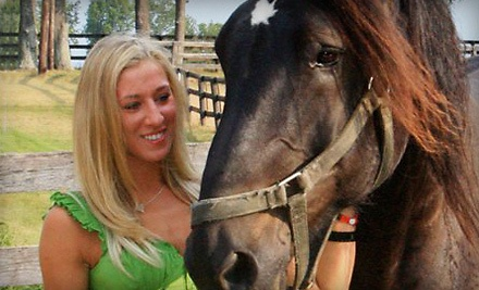 2 One-Hour Private Horseback Riding Lessons (a $60 value) - Diamond View Farm in Versailles