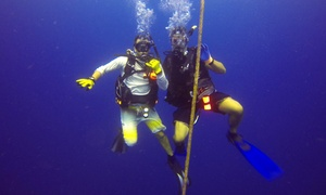 Keys Huka and Scuba: $130 for a Four-Hour Hookah Dive and Snorkel Session for Two from Keys Huka and Scuba ($260 Value)