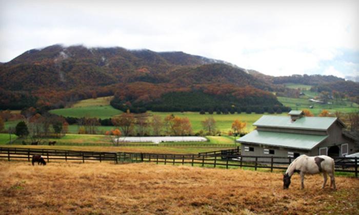 Berakah Farm - Blacksburg: One Group Horseback-Riding Lesson or Two Private Riding Lessons at Berakah Farm in Blacksburg (Up to 52% Off)