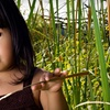69% Off Children's Photo Session and Prints