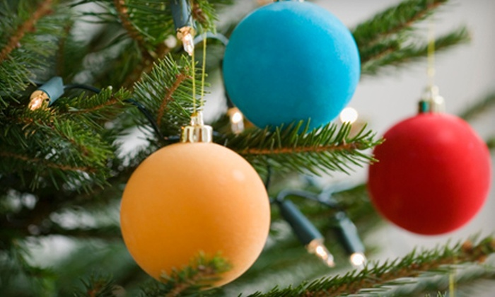 7 Day Nursery - North State: $10 for $20 Toward Christmas Trees at 7 Day Nursery