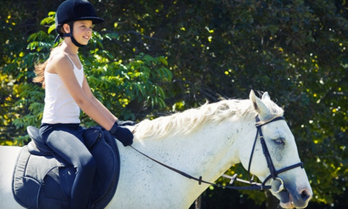 Pfeiffer Training Stables - 2: Horseback-Riding Lessons at Pfeiffer Training Stables in Cape Charles (Up to 56% Off). Three Options Available.