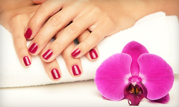 Graciela's Salon - Westerfield Manor: One, Two, or Four Mani-Pedis at Graciela's Salon (Up to 58% Off)