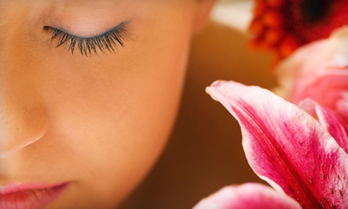 Serenity Day Spa Chicago - Flossmoor: $39 for Custom Power-Hour Facial with Aromatherapy at Serenity Day Spa in Flossmoor ($85 Value)
