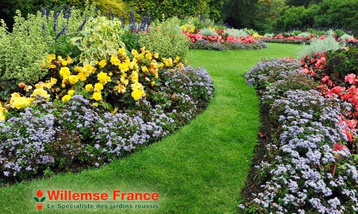Willemse France_G1 Packs arbres fruitiers, fleurs et plantes Willemse au  choix dès 49,