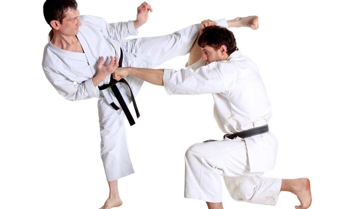 Blue Ridge Brazilian Jiu-Jitsu - Blue Ridge: Jiu-Jitsu and Karate Classes at Blue Ridge Brazilian Jiu-Jitsu (Up to 59% Off). Six Options Available.