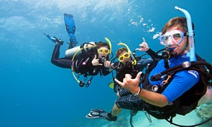 Dive World: Up to 54% Off Discover Scuba Diving Experience at Dive World
