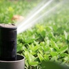 61% Off Winterization for In-Ground Irrigation System