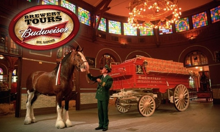 Anheuser-Busch Brewery - St Louis: $20 for Four Beer School Admissions at Anheuser-Busch Brewery ($40 Value)