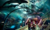 Oregon Coast Aquarium - Newport: Tickets to Oregon Coast Aquarium in Newport. Two Options Available.