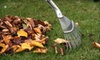 Artefacto landscapes LLC: One or Two Hours of Lawn-Debris or Snow Cleanup from Artefacto Landscapes (Up to 57% Off)