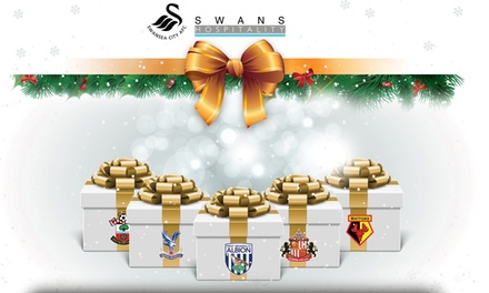 Barclays Premier League - Three Course Meal and VIP Lounge for Fixtures at Swansea City FC (from £66)