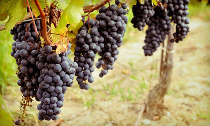 Autumn Art & Texas Wine Festival - Spring : Wine-Tasting Outing for Two, Four, Six, or Eight at the Autumn Art & Texas Wine Festival on October 13 or 14 (Half Off)