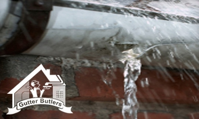 Gutter Butlers - Buffalo: Gutter Cleaning and Inspection from Gutter Butlers. Choose from Two Options.