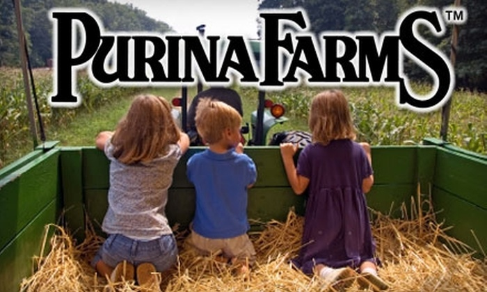 Purina Farms - Gray Summit: $8 for a Carving-Size Pumpkin, Parking, and $5 Worth of Food and Drink at the Haunted Hayloft Experience at Purina Farms ($20 Total Value)