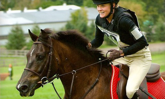 Myrddin Equestrian Centre - Erin: One or Four 60-Minute English Horseback Riding Lessons at Myrddin Equestrian Centre in Georgetown (Up to 54% Off)