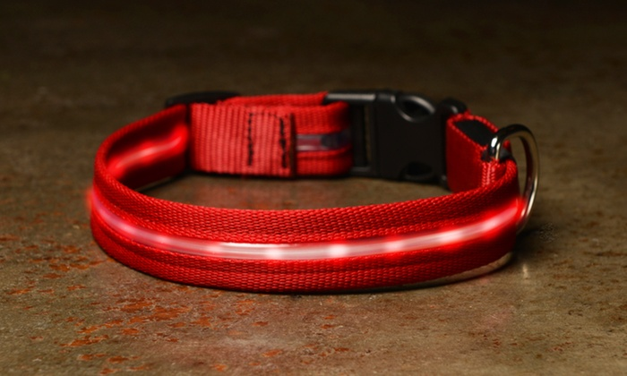 ShopTough LED Pet Collars and Leashes: ShopTough LED Pet Collars and Leashes (Up to 80% Off). Multiple Sizes and Colors Available. Free Returns.