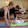 Half Off Classes at Yoga Haven