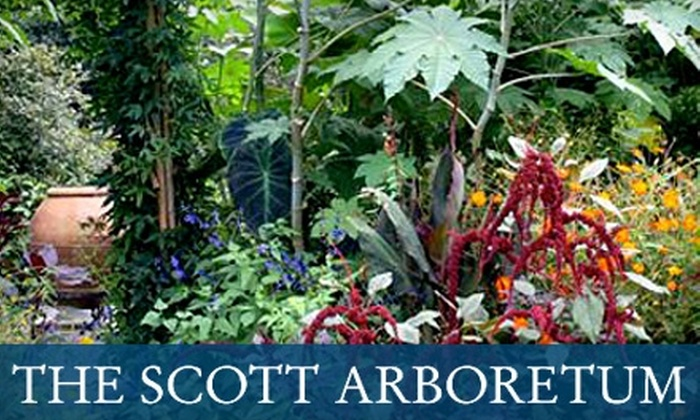 The Scott Arboretum of Swarthmore College - Swarthmore: $27 for a 12-Month Dual Membership to the Scott Arboretum ($55 Value)