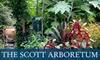 Scott Arboretum - Swarthmore: $27 for a 12-Month Dual Membership to the Scott Arboretum ($55 Value)