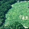 Half Off Corn-Maze Outing in High Point