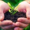 58% Off Composting Service