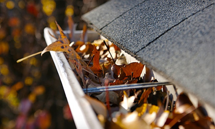 Brandon's Gutter, Window and Pressure Washing - South Euclid: $50 for Gutter Cleaning from Brandon's Gutter, Window, and Pressure Washing ($115 Value)