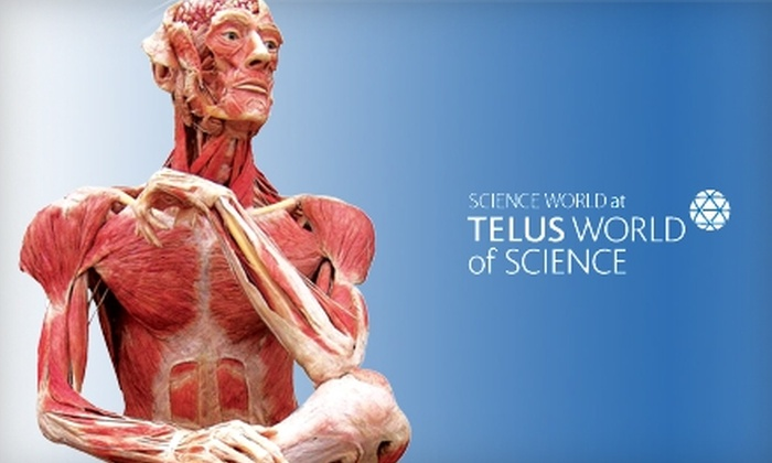 """Science World - Downtown Vancouver: $23 for Two Tickets to """"Body Worlds & The Brain"""" Exhibit at Science World in Vancouver ($47.04 Value)"""