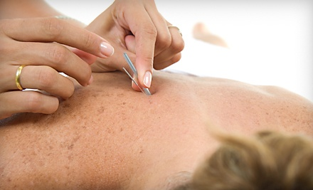 Blue Lotus Acupuncture Clinic - Blue Lotus Acupuncture Clinic in Brookfield
