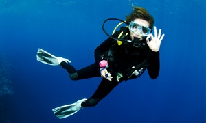 Centrun Nurkowe Divingtech: Kurs nurkowania: intro (49,99 zł) lub OWD (699 zł) i więcej opcji w Centrum Nurkowym DivingTech