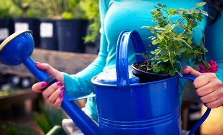 $40 Groupon to Alan's Lawnmower & Garden Center - Alan's Lawnmower & Garden Center in Santa Ana