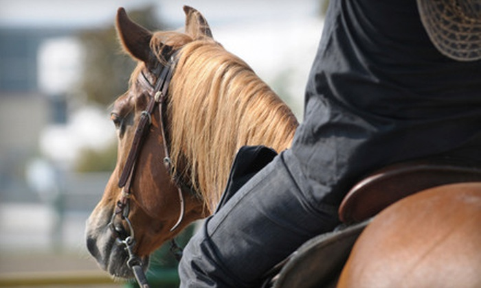 The Phoenix Equestrian Centre - Monroe: One or Two Horseback-Riding Lessons or Three-Day Holiday Riding Camp at The Phoenix Equestrian Centre (Up to 52% Off)