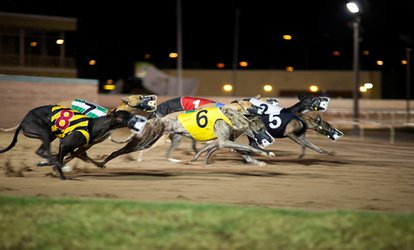 image for Greyhound Racing with Food, Drink and Racecard on 3 October - 11 December, Poole Stadium (Up to 65% Off)