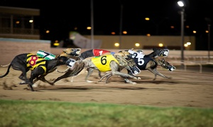 Swindon Greyhounds: Swindon Greyhound Racing With Burger and Drink at Abbey Stadium