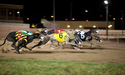 Greyhound Racing with Food, Drink and Racecard on 3 October 11 December, Poole Stadium