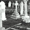 Half Off Graveyards Only! Bus Tour for Two