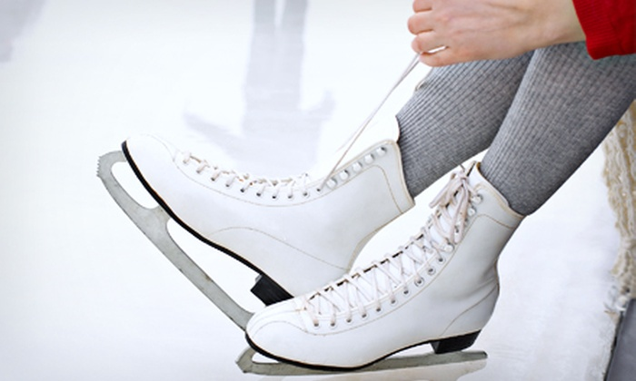 A-Game Skate Academy - Franklin: $70 for Eight Ice-Skating Classes at A-Game Skate Academy in Franklin ($150 Value)