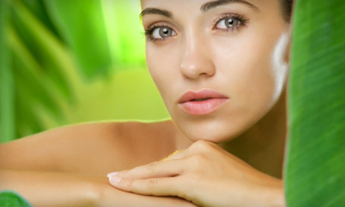 The Spa on Main - Fountain Inn: One, Three, or Five Signature Spa Facials and Paraffin Hand Treatments at The Spa on Main (Up to 61% Off)