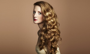 Hair A Holic Beauty Center: $50 for Shampoo, Haircut, Color, & Blowout ($90 value)