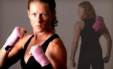 Ohio Krav Maga & Fitness - Ohio Krav Maga & Fitness in Gahanna
