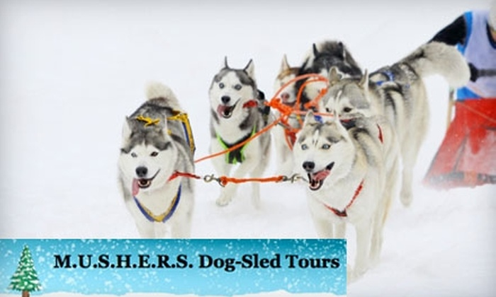 M.U.S.H.E.R.S. Dog-Sled Tours - Warren: One Winter Wonderland Day-Pass or a Dog-Sledding Experience from Mushers Dog-Sled Tours (Up to $125 Value). Choose from Three Options.