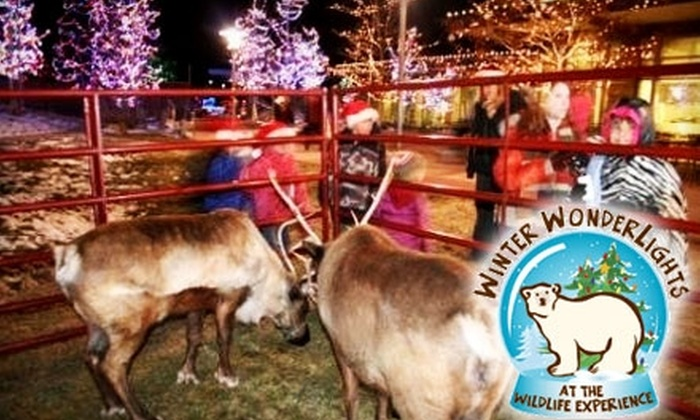 The Wildlife Experience - Parker: $9 for Two Winter WonderLights Tickets at The Wildlife Experience (Up to $18 Value)