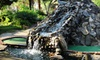 Jungle Golf - Oceanfront: All-Day Mini Golf for Two or Four with Popcorn, or Season Pass for Two at Jungle Golf (Up to 62% Off)