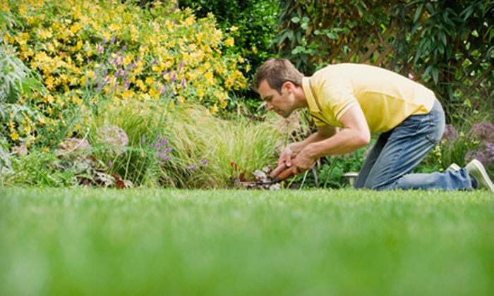 Done Right Lawn Service - Corpus Christi: Gutter Cleaning or Lawn-Care Package from Done Right Lawn Service