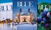 """Gemini Publications (Grand Rapids Magazine, Michigan BLUE, etc.): $12 for Two-Year Subscription to """"Michigan Blue"""" ($24 Value)"""