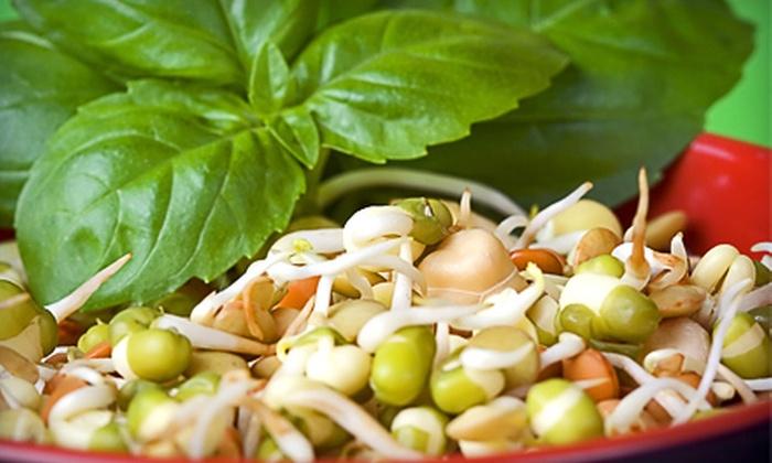 Living Foods Café - Northwest Virginia Beach: $12 for $25 Worth of Organic Raw Fare at Living Foods Café in Virginia Beach